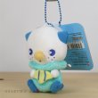 Photo2: Pokemon Center 2019 Fresh Water Series Plush Mascot Key Chain Oshawott (2)
