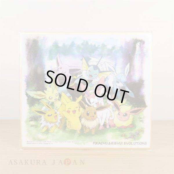 Photo1: Pokemon 2019 BANDAI Shikishi Art picture No.14 Pikachu & Eevee evolutions (1)