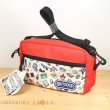 Photo4: Pokemon Center 2019 Contents of Trainer's bag Mini shoulder bag RD ver. (4)
