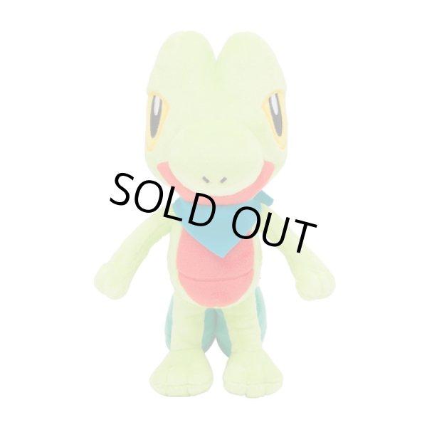 Photo1: Pokemon Center 2020 Mystery Dungeon Rescue Team DX Plush doll Treecko (1)