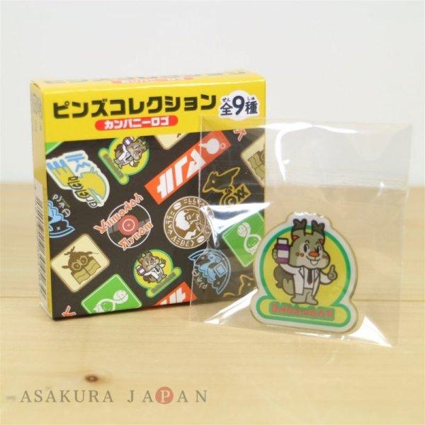 Photo1: Pokemon Center 2020 Sword Shield Galar region Company logo Pins Pin Badge #1 (1)