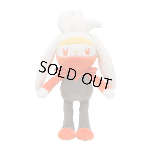Photo1: Pokemon Center 2020 Plush doll Raboot (1)