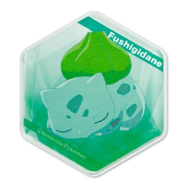 Photo1: Pokemon 2020 Honeycomb Acrylic magnet Bulbasaur (1)